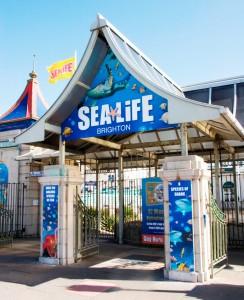 03-sea-life-centre-1128a-101210