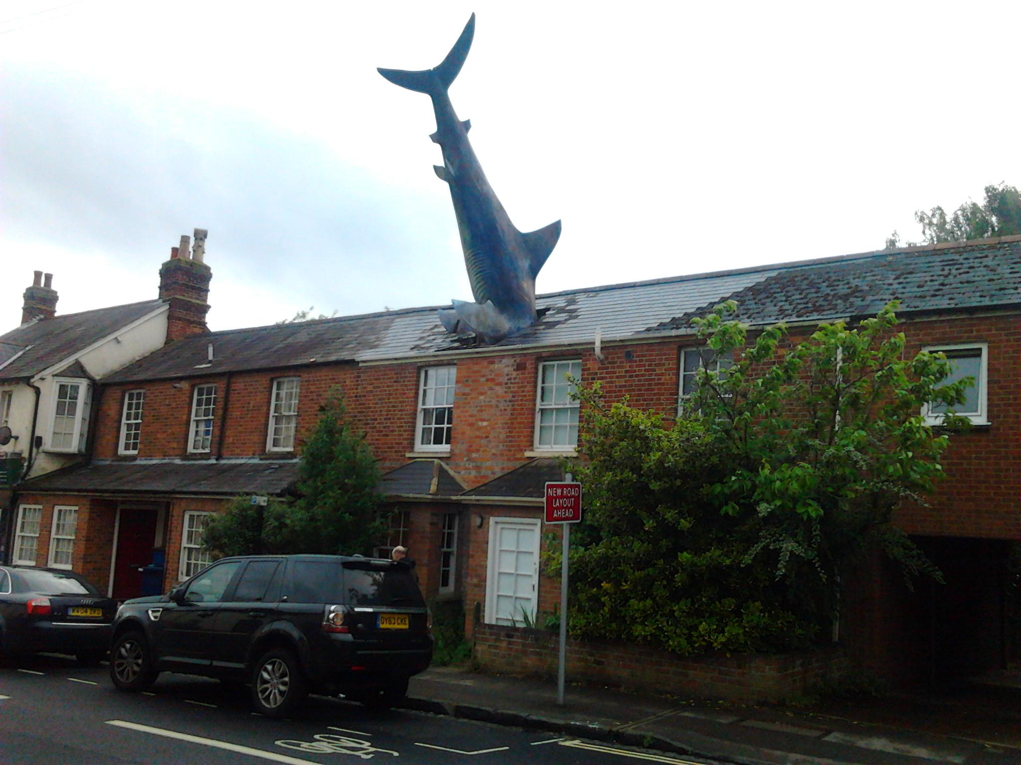Дом с акулой был построен 1860 г. в Headington, Oxford. Он ничем не отличался от своих соседей, пока более чем 100 лет спустя, в 1986 году, Бил Хайн (Bill Heine) установил на его крыше огромное туловище акулы. Теперь это место паломничества туристов со всего мира.