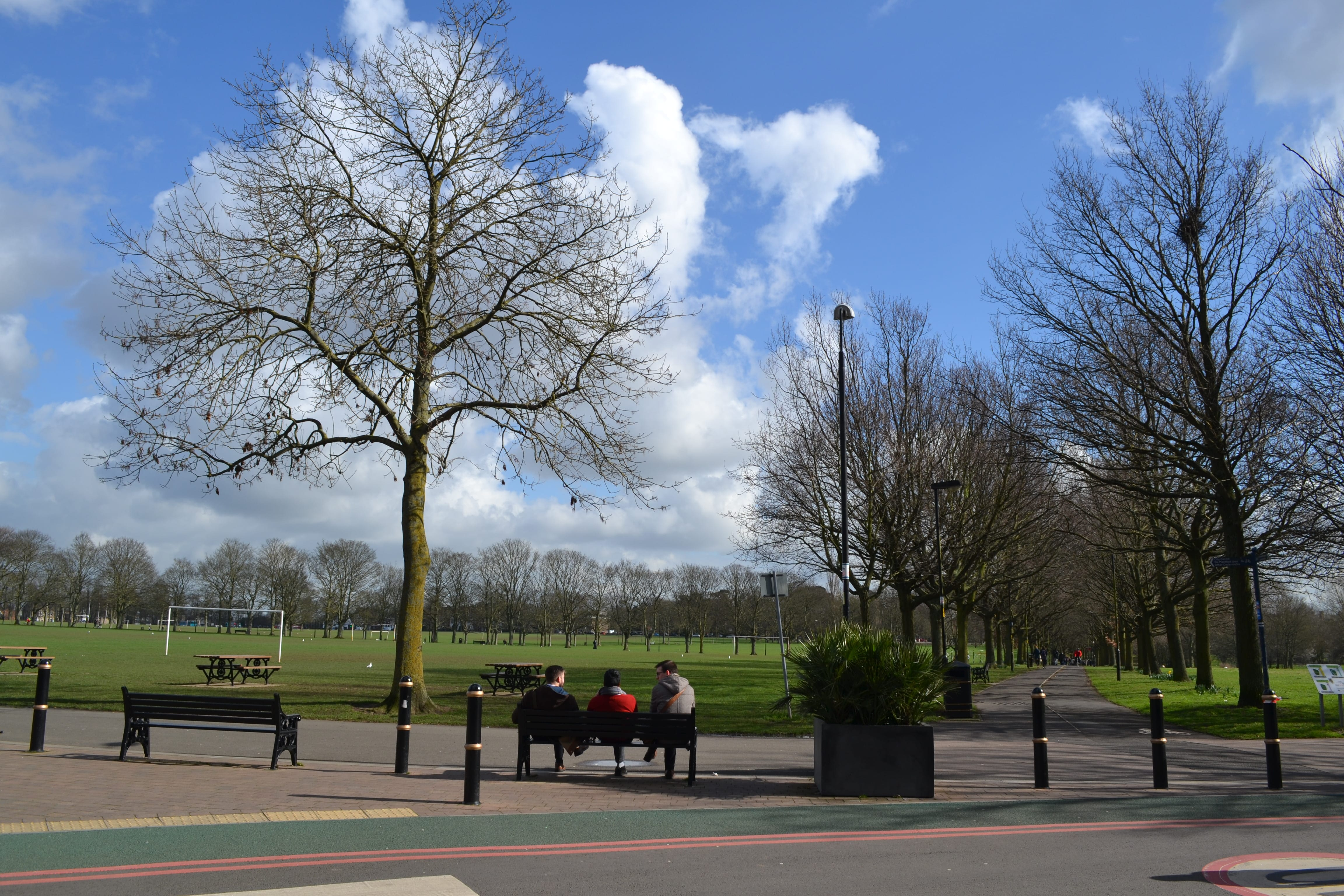 Vicky Park, тот самый, где обнаружили останки Короля Ричарда III